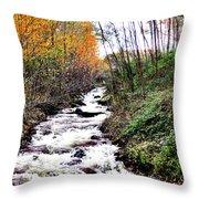 Mile Long Rapids Throw Pillow