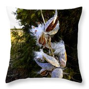 Milkweed Breeze Throw Pillow