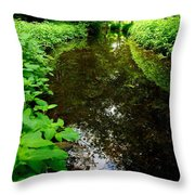 Mill Pond Stream In Green Throw Pillow