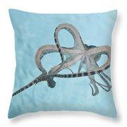 Mimic Octopus Parachuting Down, North Throw Pillow