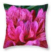 Mingus Toni Specimen Throw Pillow