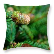 Mini Cone Throw Pillow