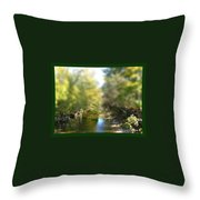 Mini Stream Throw Pillow