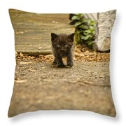 Miniature Stalker Throw Pillow