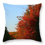 Minnesota Morning Throw Pillow