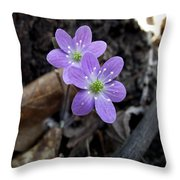 Minnesota Spring Wildflower Throw Pillow
