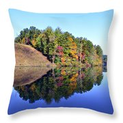 Mirror Image Throw Pillow by Susan Leggett