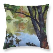 Mirror Reflection Throw Pillow