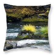 Misery Creek Throw Pillow