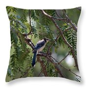 Mississippi Blue Jay Throw Pillow