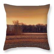 Missouri Bottoms Sweet Light Throw Pillow