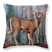 Missouri Whitetail Deer Throw Pillow