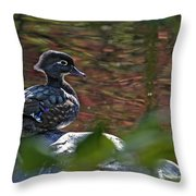 Missy Wood Duck Throw Pillow