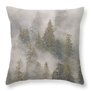 Mist In Tongass National Forest Throw Pillow