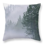 Mist Rises From An Evergreen Forest Throw Pillow