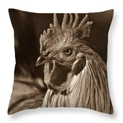Mister Rooster From The Barnyard Throw Pillow