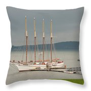 Misty Afternoon Throw Pillow
