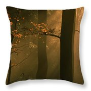 Misty Autumn Forest At Sunset Throw Pillow