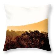 Misty Autumn Sunrise Throw Pillow