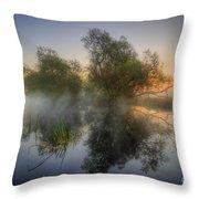 Misty Dawn 2.0 Throw Pillow