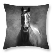 Misty In The Moonlight Bw Throw Pillow