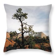 Misty Morning In Zion Canyon Throw Pillow