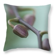 Misty Orchid Buds Throw Pillow