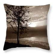 Misty Reflections S Throw Pillow
