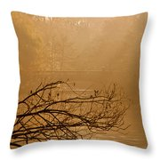 Misty Sunbeams Throw Pillow