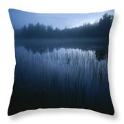 Misty View Of Taiga Forest Throw Pillow