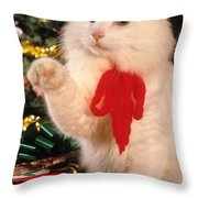Mixed Breed Cat Reaches Out Throw Pillow