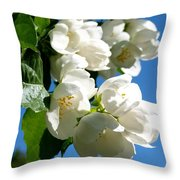 Mock Orange 4 Throw Pillow