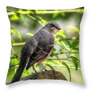 Mocking Bird Throw Pillow