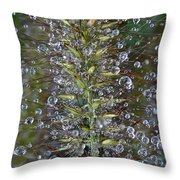 Moisture Throw Pillow