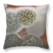 Mold On Agar Throw Pillow