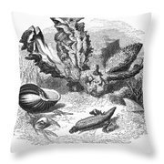 Mollusk Throw Pillow