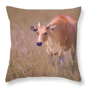 Molly Bloom Throw Pillow