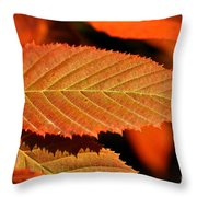 Molten Bronze Throw Pillow