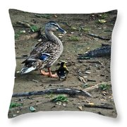 Mom And Duckling Throw Pillow