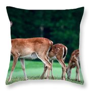 Mom With Twins Throw Pillow