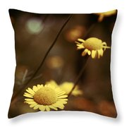 Momentum 03a Throw Pillow by Variance Collections