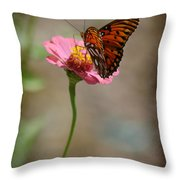 Monarch Beauty Throw Pillow
