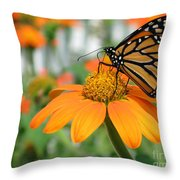 Monarch Butterfly On Tithonia Flower Throw Pillow