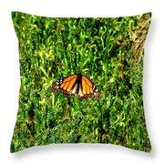 Monarch Butterfly Photograph Throw Pillow