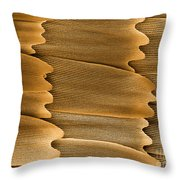Monarch Butterfly Scales, Sem Throw Pillow