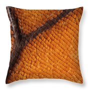 Monarch Butterfly Wing Scales Throw Pillow