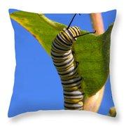Monarch Caterpillar Throw Pillow