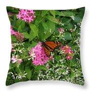 Monarch In The Garden   Throw Pillow