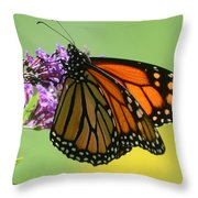 Monarch On Green Throw Pillow