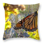 Monarch On The Dunes  Throw Pillow